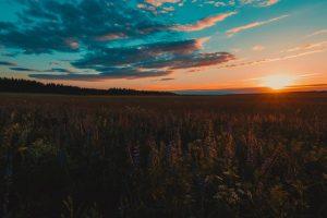 Größtmögliche innere Freiheit und Mut: Was ich von meiner Mama gelernt habe